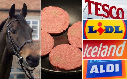 I copied this image from here: http://www.stuartwilde.com/2013/01/irish-meat-factory-closed-after-horsemeat-found-in-burgers/  I thought it summarised the situation nicely. Horse+Burgers=CarelessSupermarkets