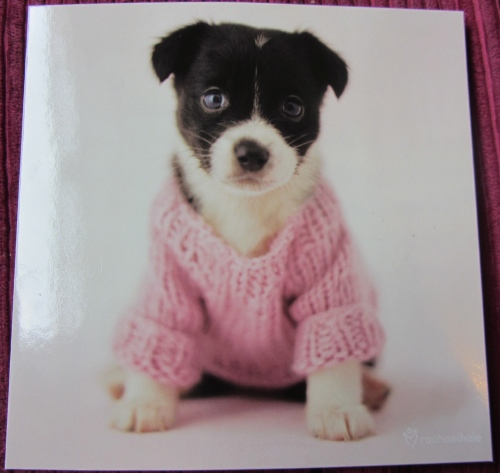 Another puppy birthday card, but this one's in a jumper.  Aww....