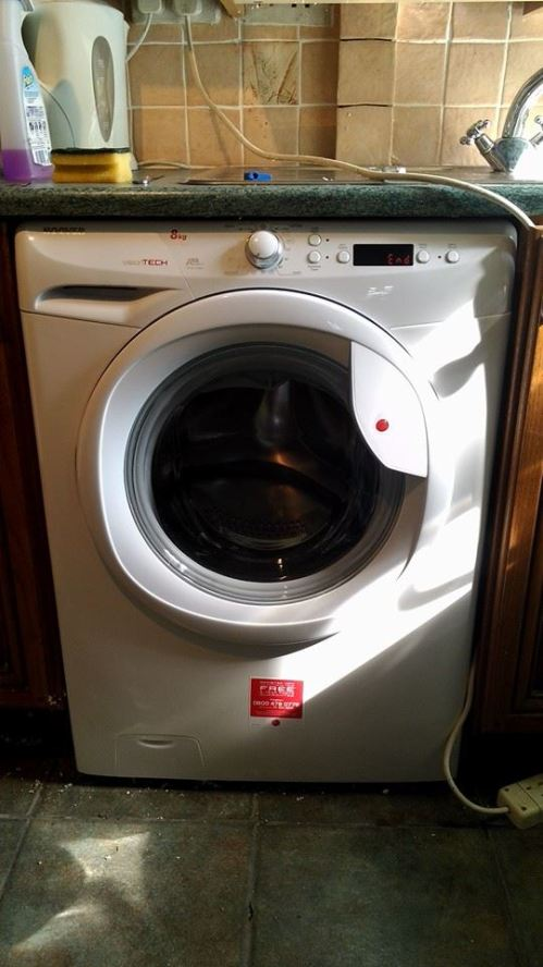 Dave The Pet Washing Machine